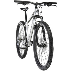 """Cannondale Trail 6 29"""", silver"""